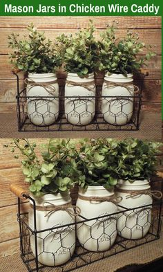 The rustic Mason Jars in this chicken wire basket sure would make a charming addition to Farmhouse Decor. You can use them for many things, greenery as shown, flowers or even silverware. So many different things! Country Crafts, Country Decor, Rustic Farmhouse, Farmhouse Style, Rustic Mason Jars, Wire Basket, Herbs Indoors, Ball Jars, Exterior Paint Colors