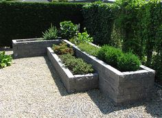 Backyard Step Stone With Patio Sidewalk Slab Also Landscape Edging And Mulch Besides Tuscan Plant Holder Square Cedar Planter Box Urbanscape Raised Garden Design, Small Garden Design, Backyard Landscaping, Pallets Garden, Backyard Garden, Garden Planters Diy, Outdoor Gardens, Garden Beds, Backyard
