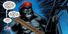 Time for the Ape of the Day!  Fun fact: Regarded as a lesser threat than Grodd, Monsieur Mallah took comfort in being the one who knew how to accessorize.