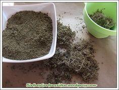 Brennesselsamen gewinnen Naturopathy, Gardening, Home Health, Flora, Kraut, How To Dry Basil, Herbalism, Herbs, Aloe Vera