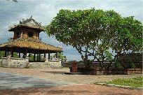 Cây hoa sứ http://www.caycongtrinh.com.vn/cay-cong-trinh/cay-hoa-su