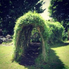 Natural Playscape WKA ::: Shady walkways. We need more of these: shady alcoves covered in vines.