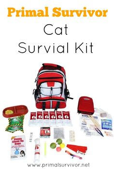 Our Cat Survival Kit includes 8oz. Package of Emergency Cat Food, 6- 4oz. Water Pouches, 10 Water Purification Tablets, 12 Hour Emergency Bright Stick, 16 Hour Body Warmer, Emergency Survival Blanket, 107- Piece First Aid Kit, Water/Food Feeding Bowl, Extra Collar with Bell, Reflective Leash Can Opener, Cat Toys, 50 Feet of Nylon Rope, 50 Pet Waste Bags
