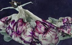 Underwater Photography by Alix Malka