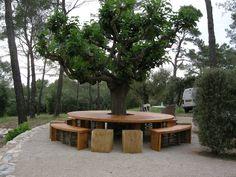Deck Around Trees, Landscaping Around Trees, Backyard Landscaping, Curved Patio, Raised Patio, Diy Outdoor Furniture, Outdoor Decor, Landscape Design, Garden Design