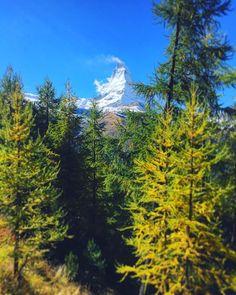 Auch im #Herbst ein Highlight! Das #Matterhorn beeindruckt einfach. Was für ein spezieller Berg. Inklusive Herbstfarben gefällts mir besonders gut! #Zermatt #Mountain #fall #autumn