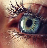 DeviantArt - Discover The Largest Online Art Gallery and Community Requiem for a dream comes to mind Pretty Eyes, Cool Eyes, Photo Oeil, Rare Eyes, Realistic Eye Drawing, Eyes Artwork, Eye Pictures, Aesthetic Eyes, Most Beautiful Eyes