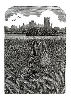 'I Can See You Mister Hare' by Andy English (wood engraving)