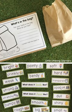 Space Mystery Science mystery bags - what object is hidden inside? Property cards for materials and their properties unit Science Worksheets, Science Lessons, 1st Grade Worksheets, Science Activities, Science Experiments, Preschool Science, Science Ideas, Science Fair, Life Science