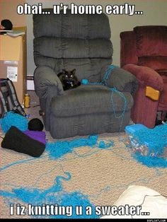 Yep cleaned up that mess before...twice...well lets just say mom needed to find a new place to hide the knitting.