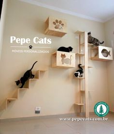 – My Life Spot Cat Ideas, Cat Climbing Wall, Cat Exercise Wheel, Cat Climber, Cat Heaven, Cat House Diy, Diy Cat Tree, Cat Playground, Cat Enclosure