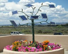Happy First Day of Spring! Time for flowers to bloom and the sun to shine...on solar panels!