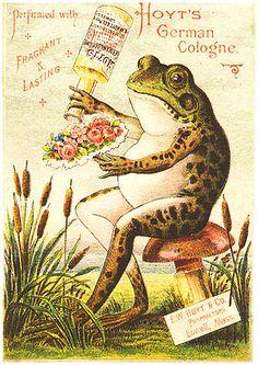 perfume, flowers... frog
