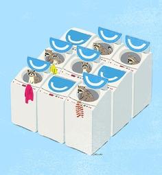 How do washing machines work? One word: Raccoons.