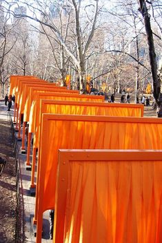 Christo and Jean Claude's The Gates for Central Park, NYC. The project took some 25 yrs. to get off the ground, but walking under those saffron flowing gates of fabrics with snow all around - yummy. A once in a lifetime event worth the trip.