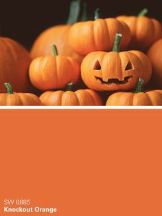 Warm Orange Paint Colors sherwin-williams orange paint color – cayenne (sw 0080) | all