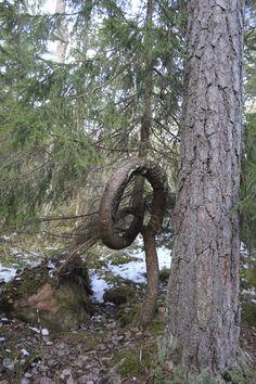 Väddö- snurrad gran Sculptures, Nature, Plants, Naturaleza, Plant, Nature Illustration, Off Grid, Planets, Sculpture