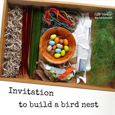 How to Set up a Creative Invitation to Build a Bird Nest – Little Worlds – Parents With Confidence – art therapy activities Art Therapy Projects, Art Therapy Activities, Spring Activities, Preschool Activities, College Activities, Art For Kids, Crafts For Kids, Bird Nest Craft, Bird Theme