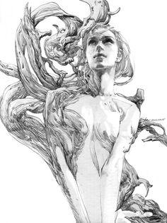 https://www.behance.net/gallery/18255403/line-sketch-3