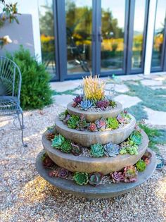 Dramatic, bizarre garden succulents lend themselves perfectly to the enhancing of contemporary architecture. Once banished to the rock garden, these plants are becoming more and more popular in and around modern homes. As houseplants (jade plant for example) they almost take care of themselves, as ground covers they are the lazy gardener's pride, and as …