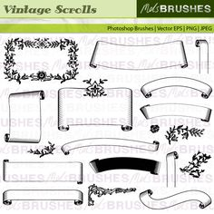 Curled scrolls, parchment ribbons and decorative elements.  FILE FORMATS YOU WILL RECEIVE  Vector EPS 8  Photoshop brush set (created in Photoshop CS)  IIndividual transparent PNG images  High quality JPEG images    LICENSE INFO