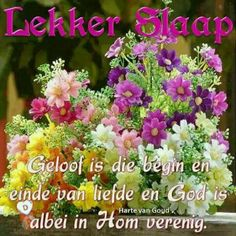 God Is, Good Night Blessings, Goeie Nag, Good Night Quotes, Afrikaans, Morning Images, Flowers, Animals, Good Evening Wishes