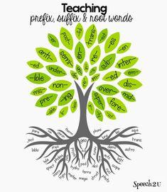 teach prefix roots