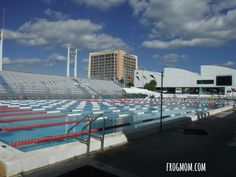 Outdoor Activities in South Florida - Swimming at Olympic Pool
