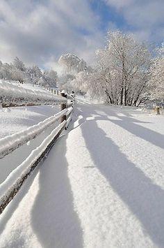 Winterland by PiotrPietrasiak