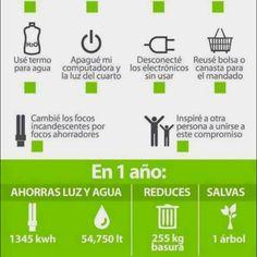 Pongamos nuestro granito de arena #ecologia