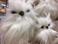 #uilen #white #owls #homedecoration #home #winterdeco #winterdeko #owl #Eule #Othmardecorations #Ootmarsum