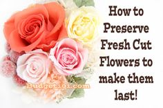 How to Preserve Flowers + howto have permanent flowers with glycerin