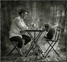 Genius Photography by Andy Prokh Animals For Kids, Cute Animals, Son Chat, Cute Photography, Wild Creatures, Cat People, British Shorthair, Expo, I Love Cats