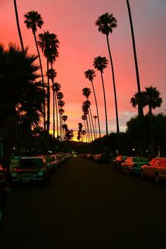 Gorgeous Los Angeles sunset!