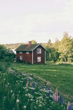 This looks like the house we stayed in Sweden and had the most fantastic holiday… summer garden – Outdoor Wedding Decorations 2019 Red Houses, Little Houses, Swedish Cottage, Red Cottage, H & M Home, Home And Deco, My Dream Home, Dream Barn, Farm Life