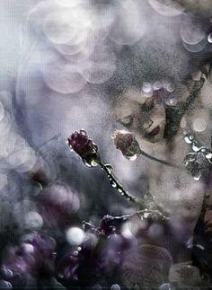 2.Aspettando Primavera | Sensazioni d'inverno | Antonella Iurilli Duhamel | Scrivere e pubblicare gratis online poesie, racconti, condividere fotografie e grafica - Sito e blog Rosso Venexiano -