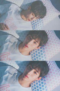 ⚠ bxb area ⚠ Age switch ⚠ local series ⚠ So many harsh words Tenta… Seventeen Lee Seokmin, Seventeen Wonwoo, Woozi, Jeonghan, Carat Seventeen, Harsh Words, Seventeen Wallpapers, Pledis Entertainment, Seungkwan