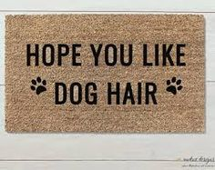 Hope you like dog hair door mat Fu Dog, Yorkies, Home Interior, Interior Colors, Interior Ideas, Crazy Dog, First Home, Dog Mom, Dog Life