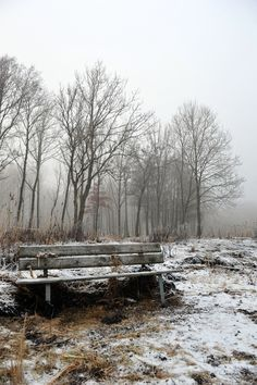 ARTFINDER: Resting on a Foggy Day by Randi Grace Nilsberg - It's not tempting to sit down on this bench on a cold and foggy day in December, but if you do and if you listen carefully, the bench might tell you some int...