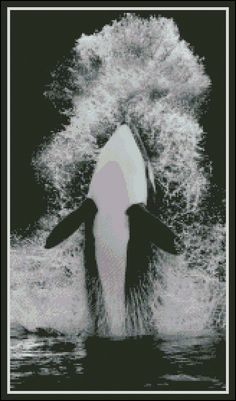 Orca's Splash - Counted Needle Point and Cross Stitch Chart Pattern offered at www.etsy.com/listing/229024837.