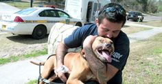 Dog fighting Left This Beautiful Boy Injured For Life But That Hasn't Changed His Spirit Or Loving Nature! | The Animal Rescue Site Blog