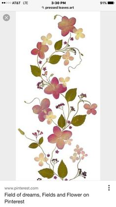Pressed Leaves, Stones, Flowers, Cards, Rocks, Maps, Royal Icing Flowers, Playing Cards, Flower