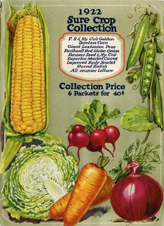 """Just inside the back cover of the 1922 Farmer Seed & Nursery catalog is a full color, mouth-watering collection of some of the company's best vegetables.  Corn, peas, radishes, lettuce, carrots, and onions are featured.  The """"Sure Crop"""" collection of all six seed packets sold for 40 cents.  Farmer Seed & Nursery originated in Faribault, MN in 1888. Catalogs are kept in the University of MN Andersen Horticultural Library."""
