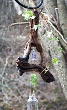 Driftwood plant starter o... - Nature's Momma Bear | Scott's Marketplace