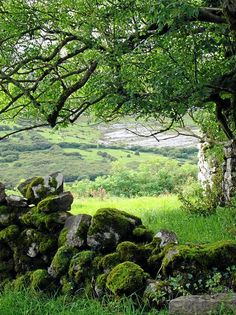 Stone Wall in Conamara near John O'Donohue's family home