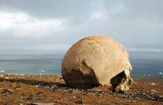 Amazing Stone Spheres of Champ Island (Franz Josef Land, Far North of Russia) Vladimir Putin, Asia, Top Travel Destinations, Flat Earth, Ancient Aliens, Kugel, North West, City, World