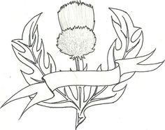 Thistle Tattoo Design by Burrakuroze on DeviantArt Free Motion Embroidery, Hand Embroidery Patterns, Quilt Patterns, Celtic Quilt, Scottish Thistle Tattoo, Christmas Art For Kids, Thistle Flower, Celtic Art, Celtic Symbols