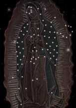 imagens nossa senhora guadalupe as estrelas do manto - Pesquisa Google