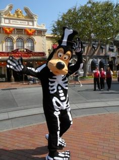 Travel Time : Disneyland in the Fall