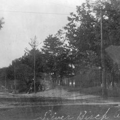 Silver Birch Avenue, looking north on Queen Street East, The Beach, Toronto - 1912